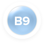 Vitamin B9 (Folic Acid)